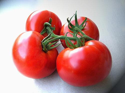 旬の赤いトマトは健康パワーがたっぷり