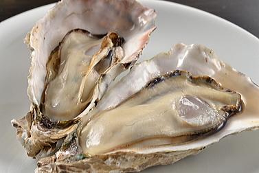 牡蠣で老化を回復